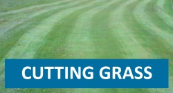 Click here for Grasscutting page