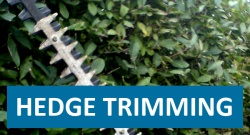 Click here for Hedge Trimming page