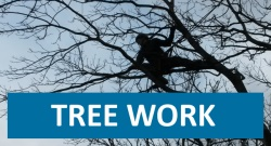Click here for Tree Work page